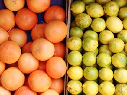 pomelos e limões Sicilianos by Rich