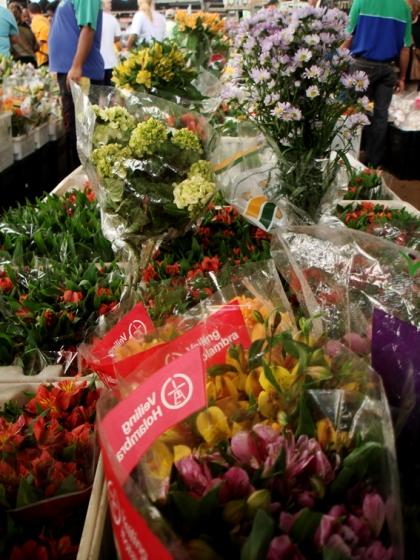 Flores no CEASA
